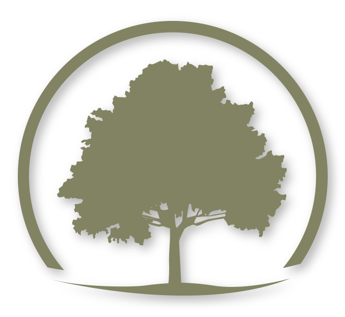 The tree in our Logo